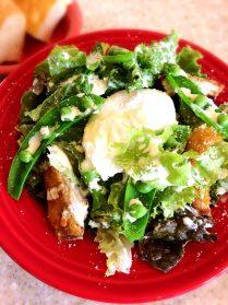Saladサラダランチ